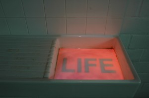'Truth, Life', in Dagmar De Pooter - Gallery, 2009